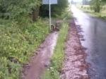 droga na Borki - czerwiec 2013