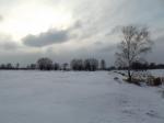 Śnieżna zima I/2014